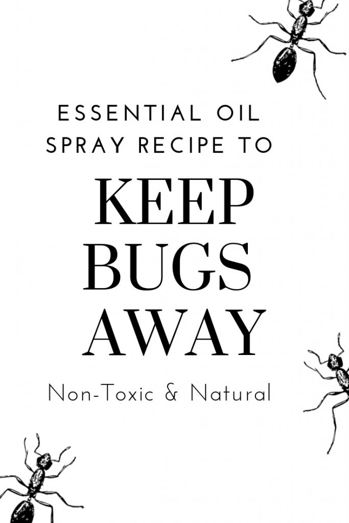 Tap here for an easy, non-toxic spray you can make in minutes to keep bugs away from invading your home and social events. #naturalliving #cleaningtips #entertainingideas #detox