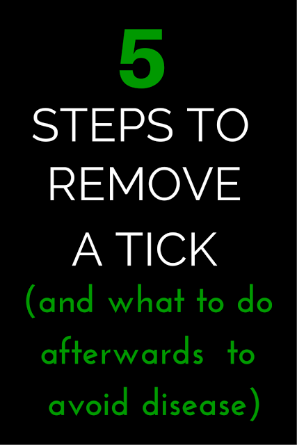 Time outside is part of living the healthy life, but getting a tick bite sure isn't. FInd out here the correct 5 step method to remove a tick and to avoid serious disease. (TheHealthMinded.com) #health
