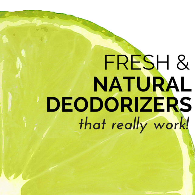Come take a look at these natural, non-toxic deodorizers that really work and that can make your home the best smelling house on the block! TheHealthMinded.com
