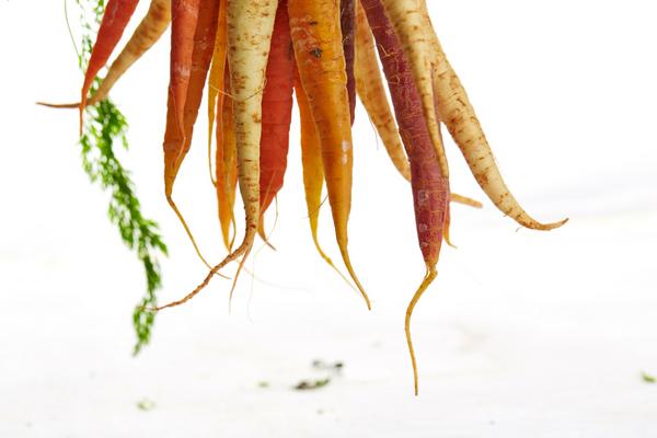 carrots (2)